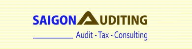 Sai Gon Auditing